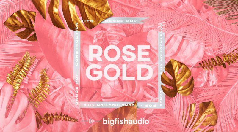 Rose Gold: Dance Pop Construction Kits